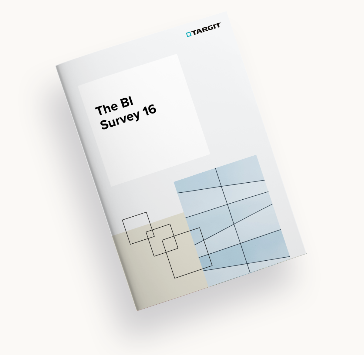 TARGIT was named a leader across 18 different categories in The BI Survey 16