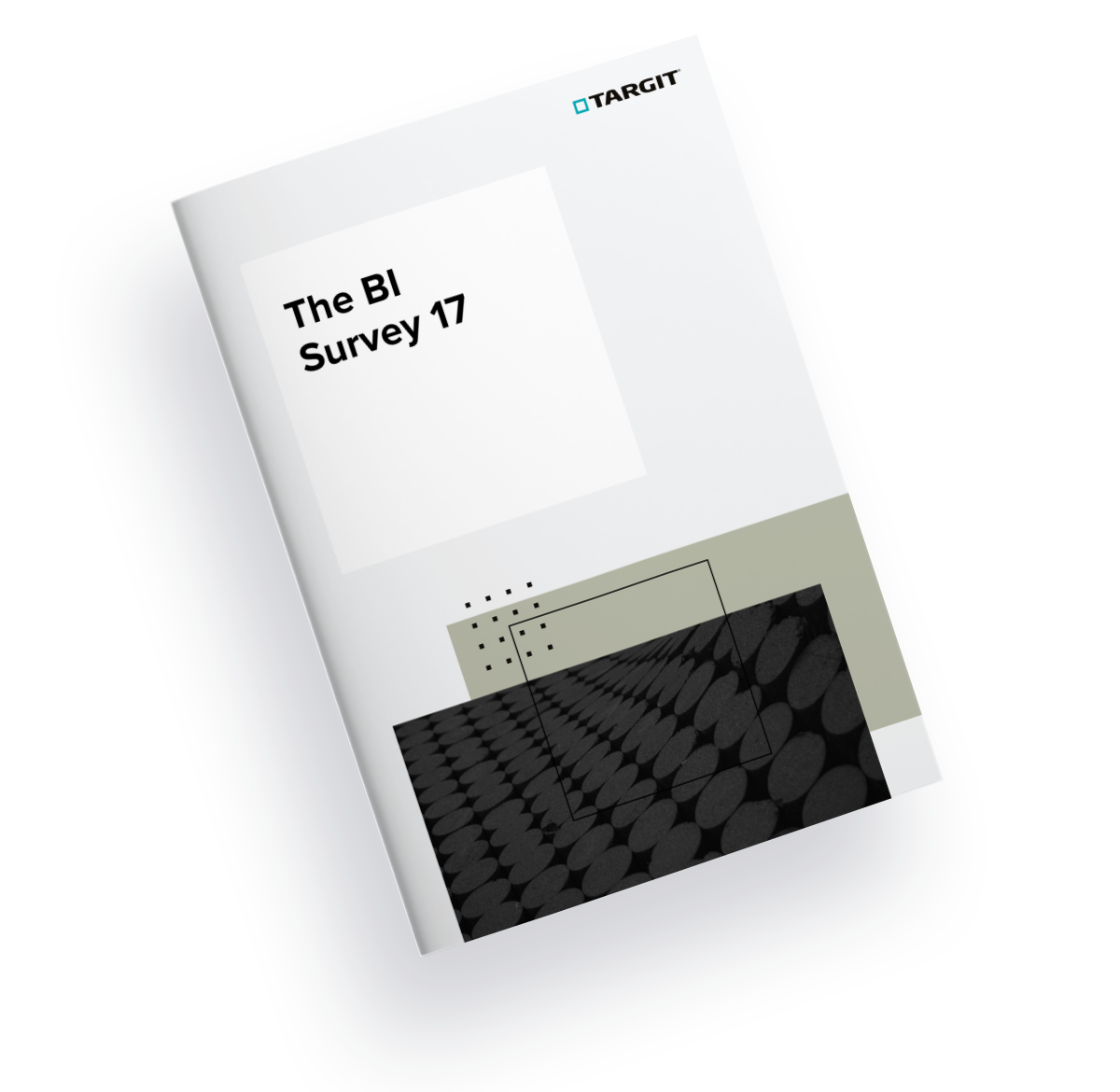 The BI Survey 17 cover