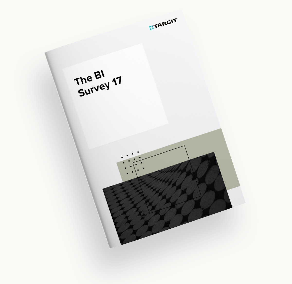 See how TARGIT ranks against the competition in The BI Survey 17