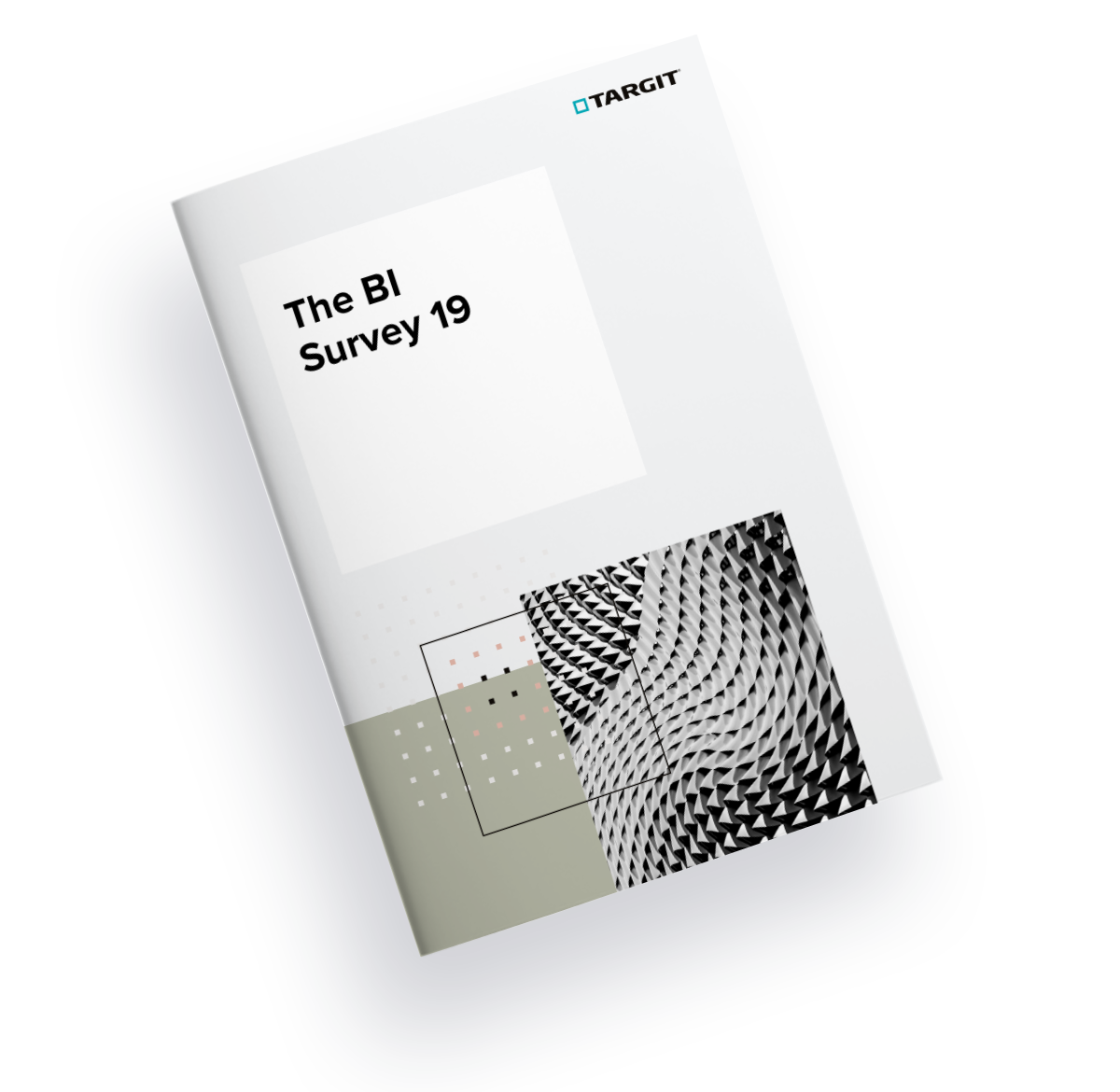 The BI Survey 19 cover