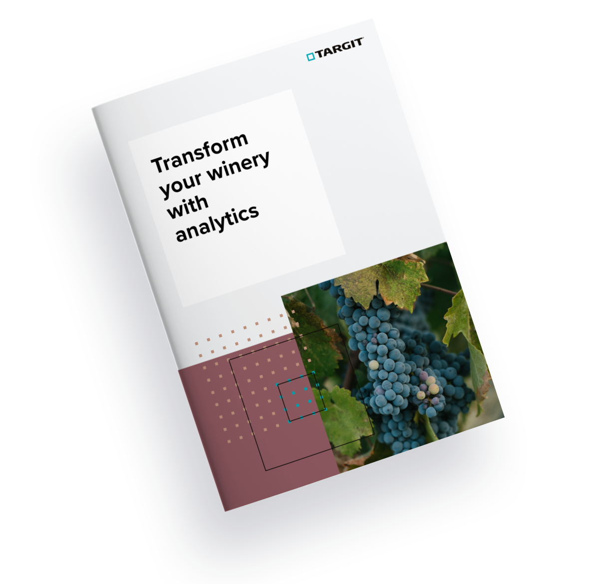 Transform your winery with analytics