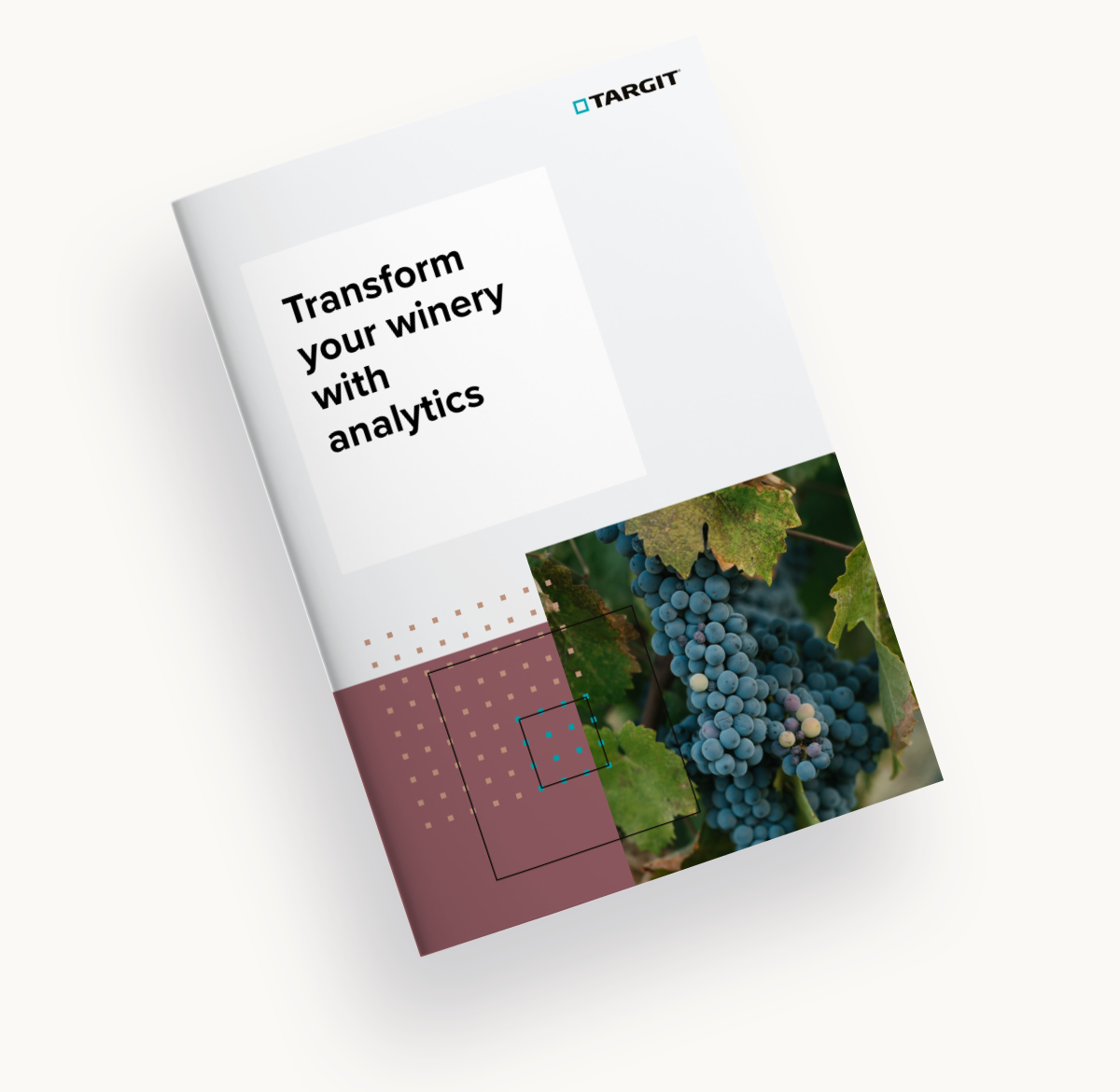How to transform your winery with analytics